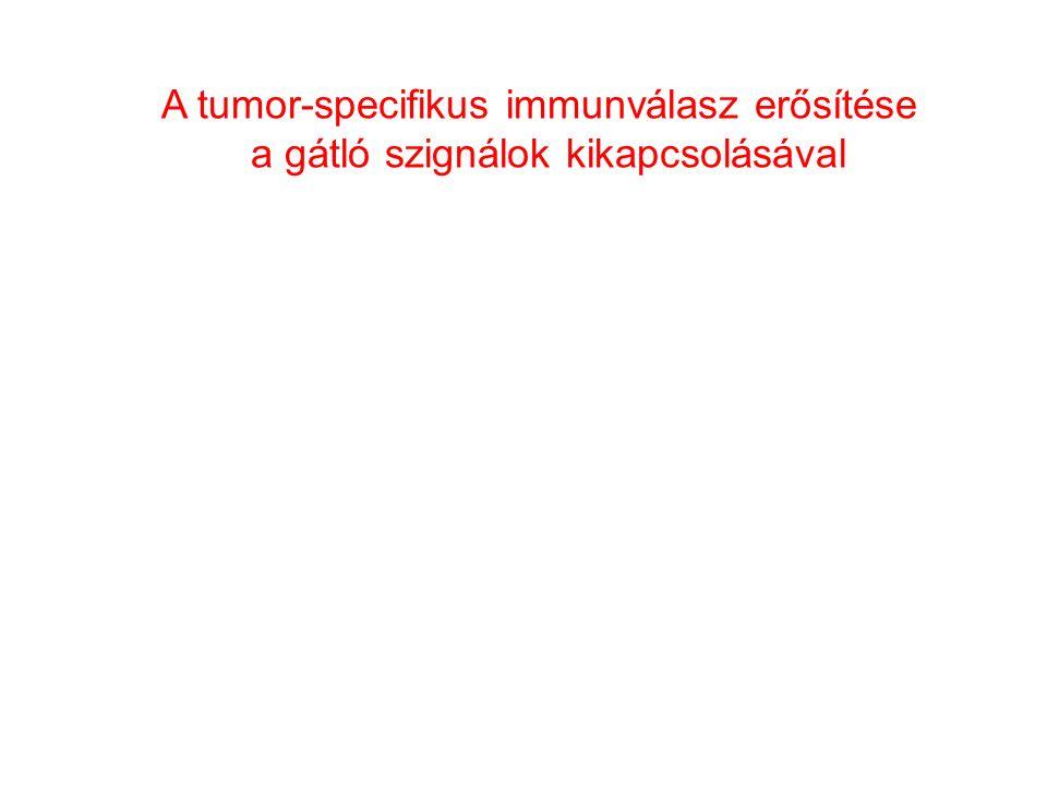 A tumor-specifikus immunválasz erősítése a gátló szignálok kikapcsolásával