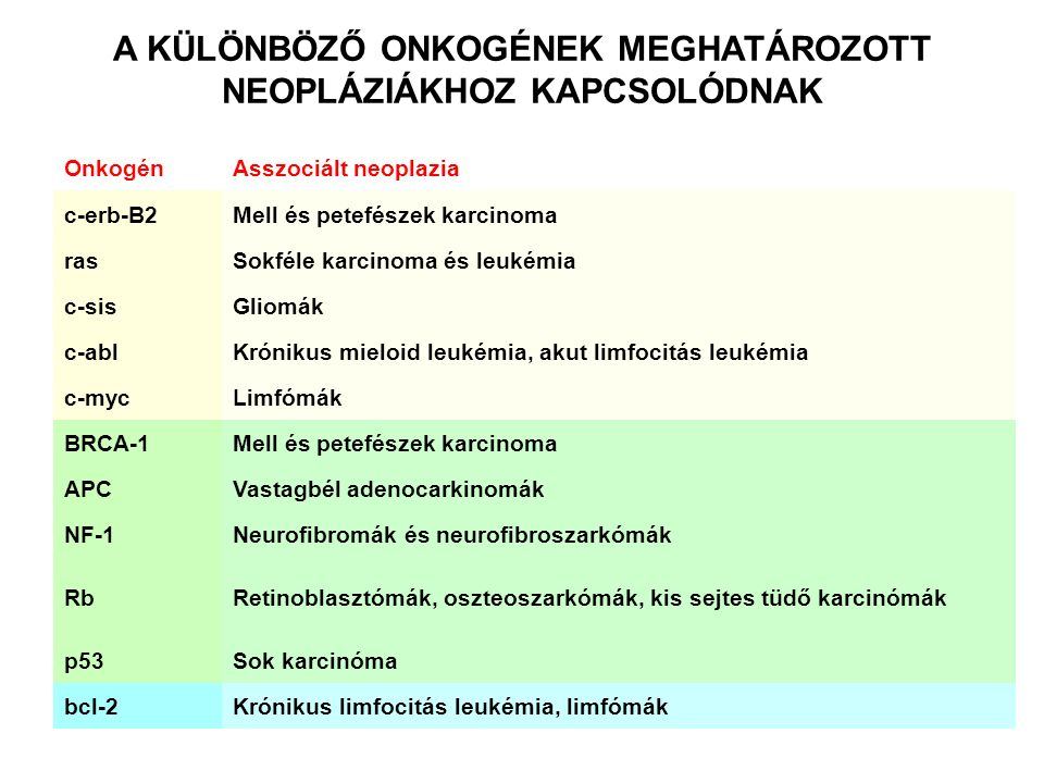 OnkogénAsszociált neoplazia c-erb-B2Mell és petefészek karcinoma rasSokféle karcinoma és leukémia c-sisGliomák c-ablKrónikus mieloid leukémia, akut limfocitás leukémia c-mycLimfómák BRCA-1Mell és petefészek karcinoma APCVastagbél adenocarkinomák NF-1Neurofibromák és neurofibroszarkómák RbRetinoblasztómák, oszteoszarkómák, kis sejtes tüdő karcinómák p53Sok karcinóma bcl-2Krónikus limfocitás leukémia, limfómák A KÜLÖNBÖZŐ ONKOGÉNEK MEGHATÁROZOTT NEOPLÁZIÁKHOZ KAPCSOLÓDNAK