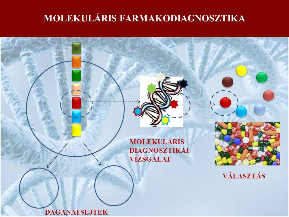 MOLEKULÁRIS FARMAKODIAGNOSZTIKA MOLEKULÁRIS DIAGNOSZTIKAI VIZSGÁLAT VÁLASZTÁS DAGANATSEJTEK