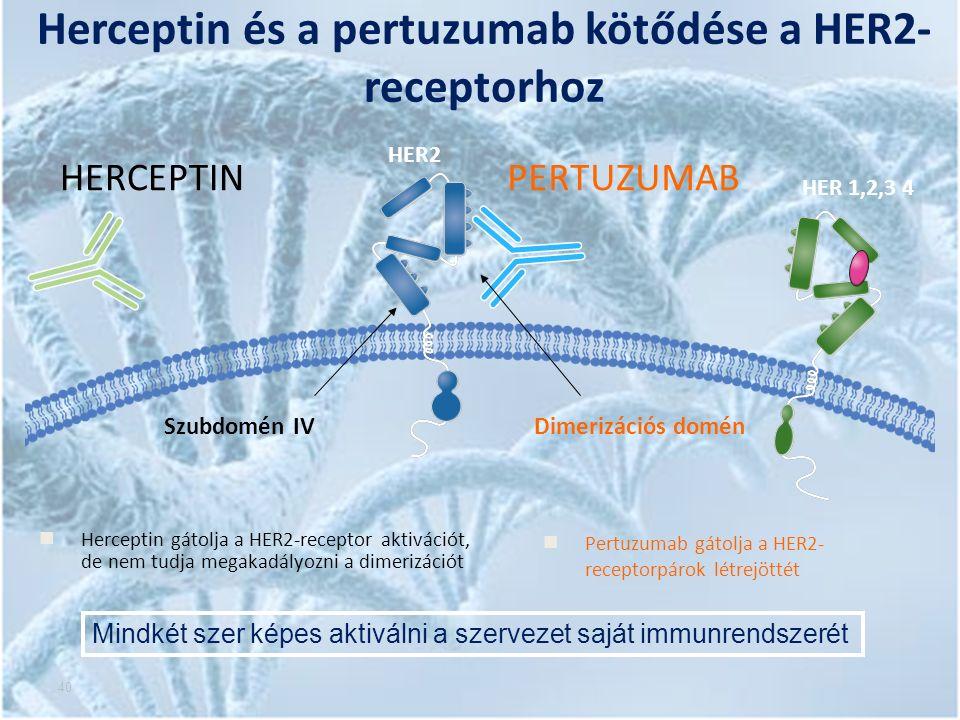 40 Herceptin és a pertuzumab kötődése a HER2- receptorhoz HER2 HERCEPTINPERTUZUMAB Szubdomén IVDimerizációs domén HER 1,2,3 4 Herceptin gátolja a HER2-receptor aktivációt, de nem tudja megakadályozni a dimerizációt Pertuzumab gátolja a HER2- receptorpárok létrejöttét Mindkét szer képes aktiválni a szervezet saját immunrendszerét