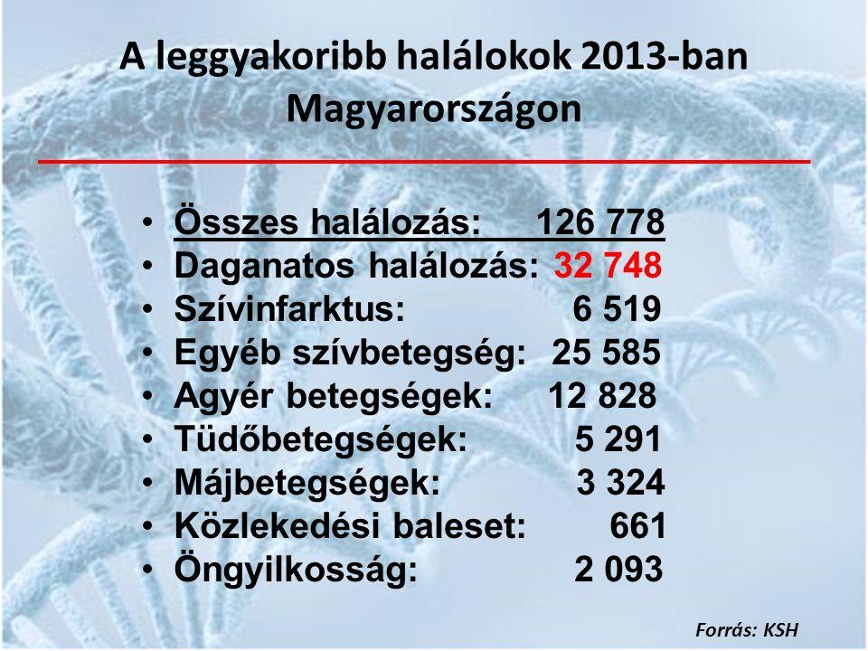 A leggyakoribb halálokok 2013-ban Magyarországon Összes halálozás: 126 778 Daganatos halálozás: 32 748 Szívinfarktus: 6 519 Egyéb szívbetegség: 25 585 Agyér betegségek: 12 828 Tüdőbetegségek: 5 291 Májbetegségek: 3 324 Közlekedési baleset: 661 Öngyilkosság: 2 093 Forrás: KSH