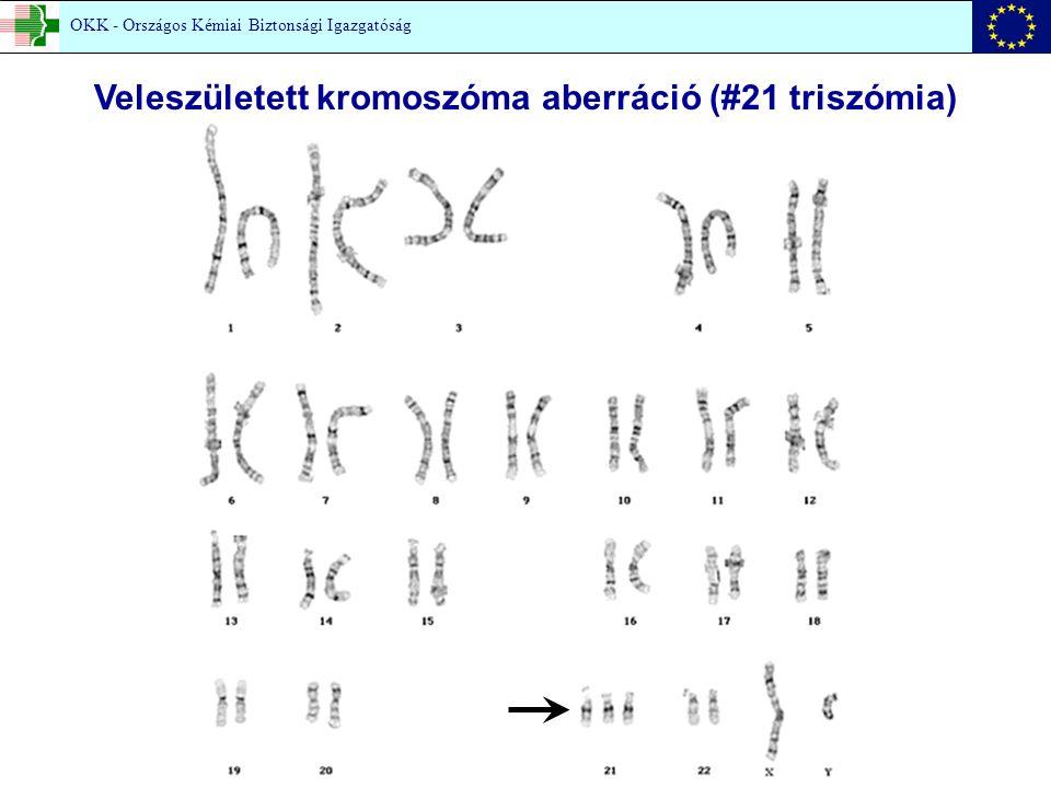 Veleszületett kromoszóma aberráció (#21 triszómia) OKK - Országos Kémiai Biztonsági Igazgatóság