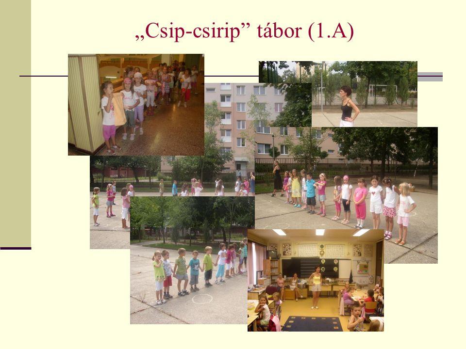 """Csip-csirip tábor (1.A)"