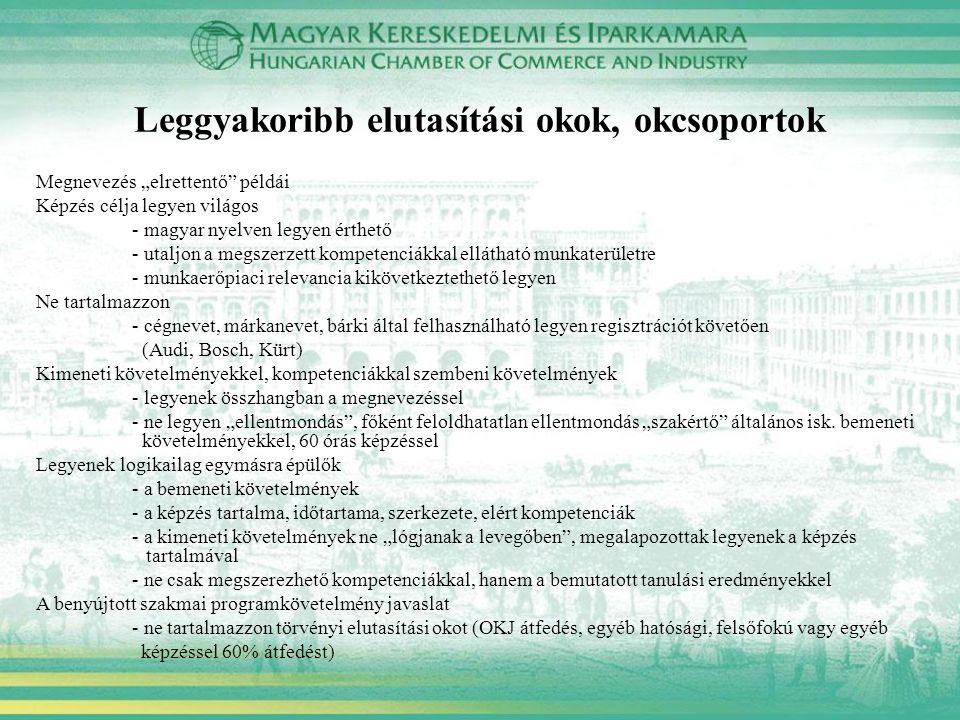 """Megnevezés """"elrettentő"""" példái Képzés célja legyen világos - magyar nyelven legyen érthető - utaljon a megszerzett kompetenciákkal ellátható munkaterü"""