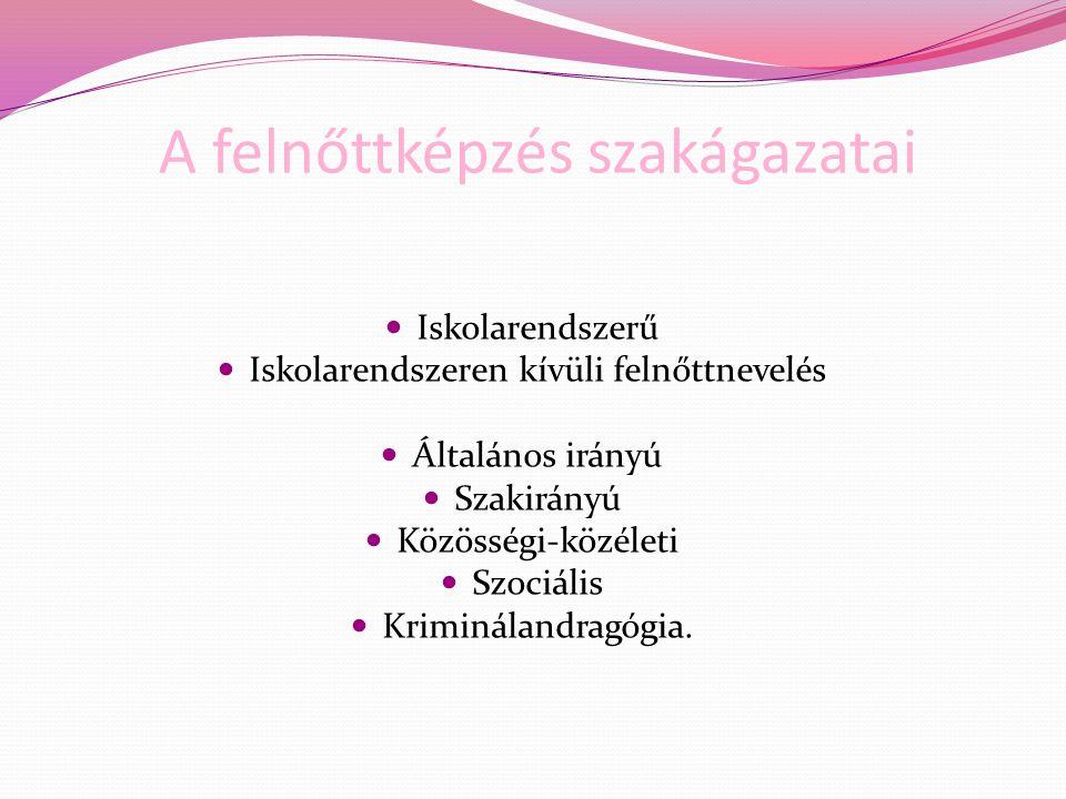 …sajátos elvek… Megfogalmazott követelmények érvényesek Kisebbségi önazonosság megőrzése, erősítése Másodnyelv, tanítási nyelv Kisebbségi népismeret oktatás Integráltan Felzárkóztató, vagy interkulturális programok (együtt)keretében Önálló tárgyként Anyanyelvű oktatás – magyar, mint másodnyelv Kétnyelvű kisebbségi oktatás Nyelvoktató kisebbségi oktatás Felzárkóztat, interkultirális és nyelvoktató oktatás kombinálható