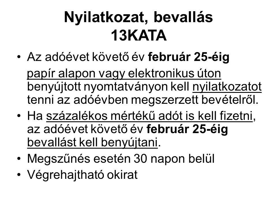 Nyilatkozat, bevallás 13KATA Az adóévet követő év február 25-éig papír alapon vagy elektronikus úton benyújtott nyomtatványon kell nyilatkozatot tenni