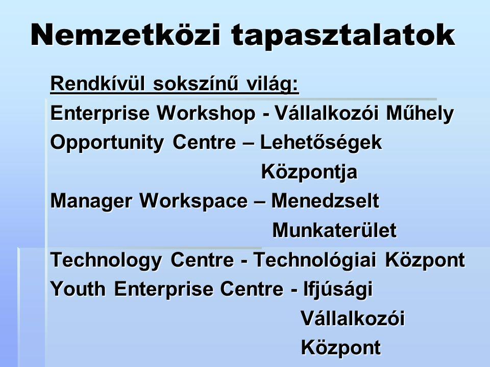 Nemzetközi tapasztalatok Rendkívül sokszínű világ: Enterprise Workshop - Vállalkozói Műhely Opportunity Centre – Lehetőségek Központja Központja Manager Workspace – Menedzselt Munkaterület Munkaterület Technology Centre - Technológiai Központ Youth Enterprise Centre - Ifjúsági Vállalkozói Vállalkozói Központ Központ