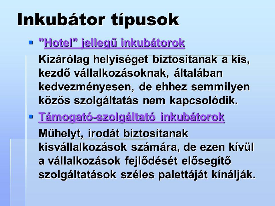 Inkubátor típusok  Hotel jellegű inkubátorok Kizárólag helyiséget biztosítanak a kis, kezdő vállalkozásoknak, általában kedvezményesen, de ehhez semmilyen közös szolgáltatás nem kapcsolódik.