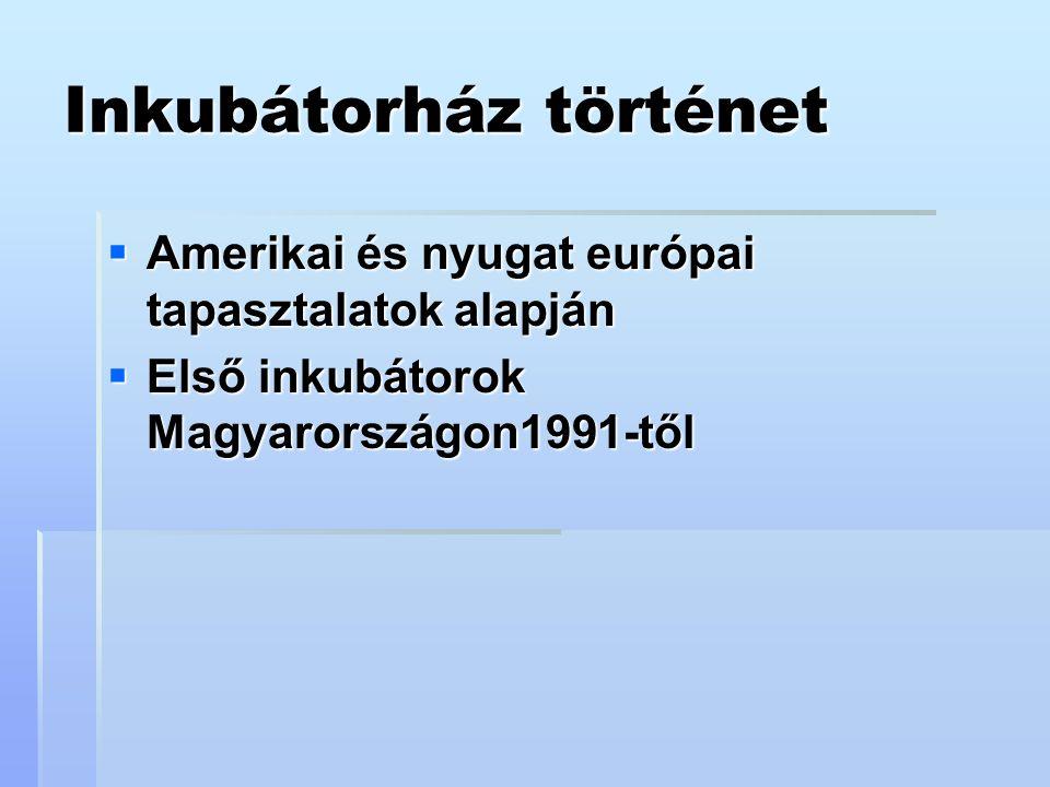 Inkubátorház történet  Amerikai és nyugat európai tapasztalatok alapján  Első inkubátorok Magyarországon1991-től