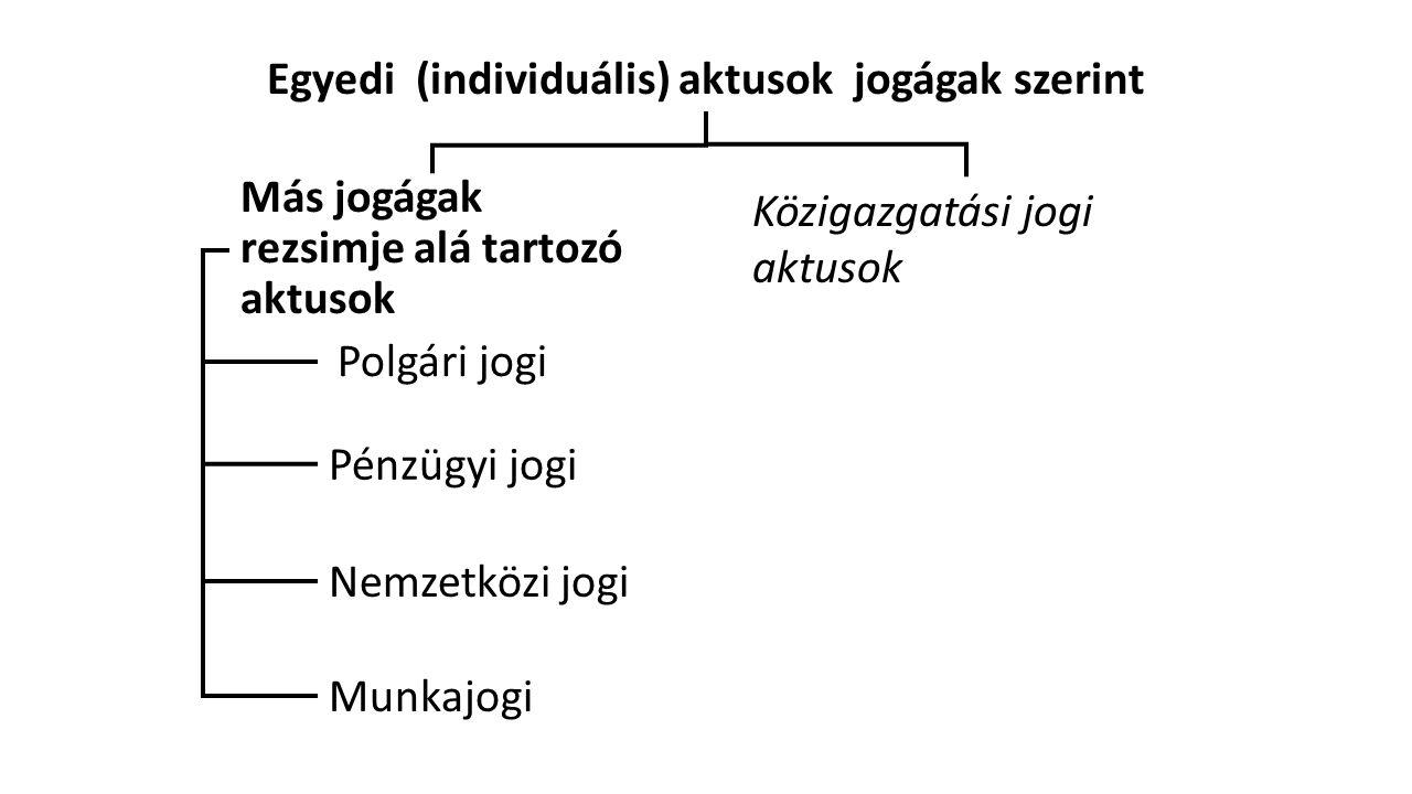 Egyedi (individuális) aktusok jogágak szerint Más jogágak rezsimje alá tartozó aktusok Közigazgatási jogi aktusok Pénzügyi jogi Nemzetközi jogi Munkajogi Polgári jogi