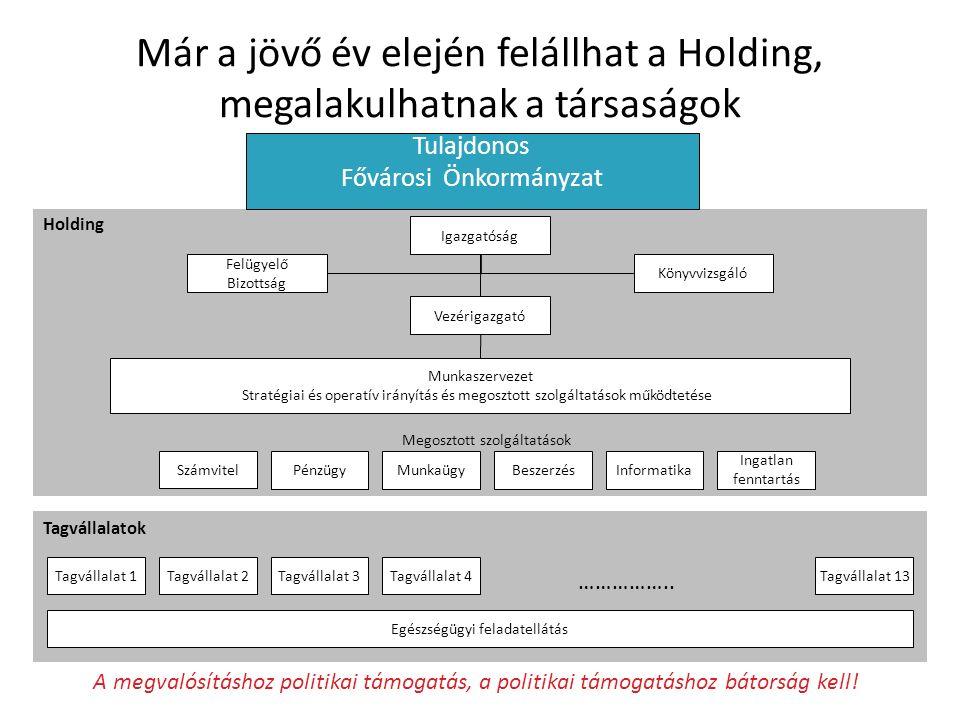 Már a jövő év elején felállhat a Holding, megalakulhatnak a társaságok Igazgatóság Felügyelő Bizottság Könyvvizsgáló Tulajdonos Fővárosi Önkormányzat Holding Vezérigazgató Munkaszervezet Stratégiai és operatív irányítás és megosztott szolgáltatások működtetése Tagvállalatok Tagvállalat 1Tagvállalat 2Tagvállalat 3Tagvállalat 13 ……………..