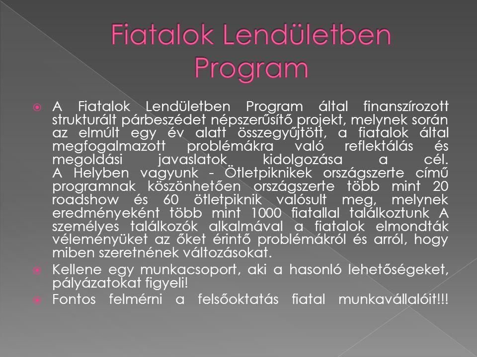  A Fiatalok Lendületben Program által finanszírozott strukturált párbeszédet népszerűsítő projekt, melynek során az elmúlt egy év alatt összegyűjtött