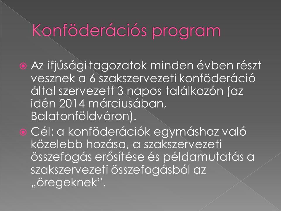  Az ifjúsági tagozatok minden évben részt vesznek a 6 szakszervezeti konföderáció által szervezett 3 napos találkozón (az idén 2014 márciusában, Balatonföldváron).