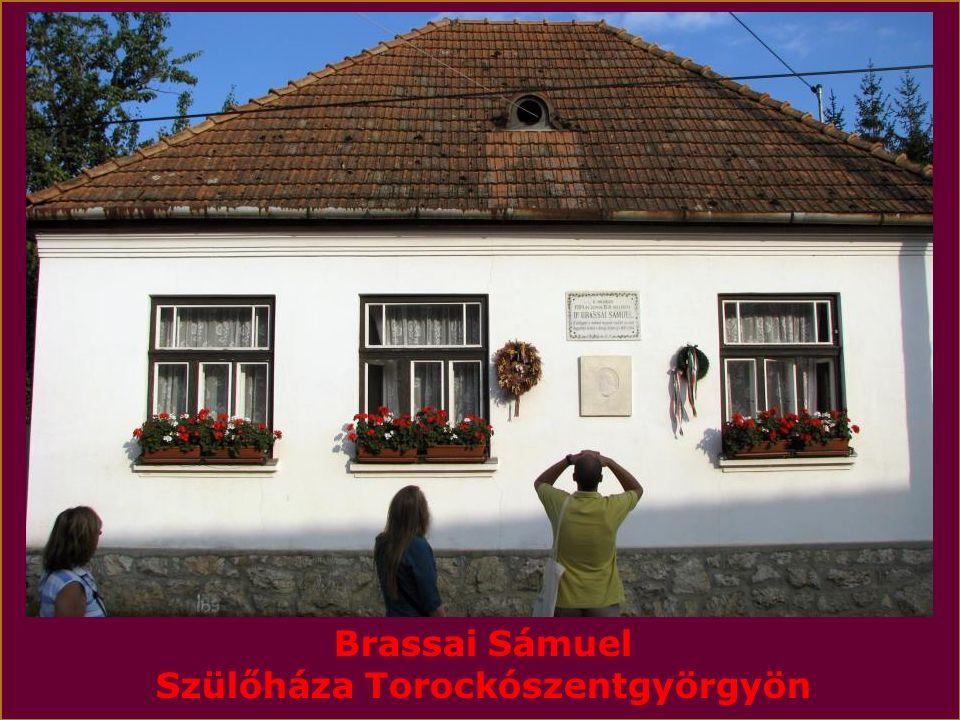 BRASSAI SÁMUEL Az utolsó erdélyi polihisztor (1800.