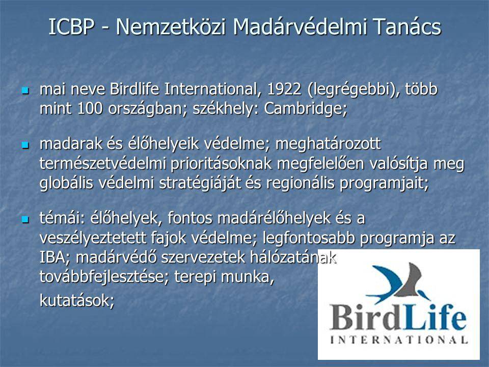ICBP - Nemzetközi Madárvédelmi Tanács mai neve Birdlife International, 1922 (legrégebbi), több mint 100 országban; székhely: Cambridge; mai neve Birdlife International, 1922 (legrégebbi), több mint 100 országban; székhely: Cambridge; madarak és élőhelyeik védelme; meghatározott természetvédelmi prioritásoknak megfelelően valósítja meg globális védelmi stratégiáját és regionális programjait; madarak és élőhelyeik védelme; meghatározott természetvédelmi prioritásoknak megfelelően valósítja meg globális védelmi stratégiáját és regionális programjait; témái: élőhelyek, fontos madárélőhelyek és a veszélyeztetett fajok védelme; legfontosabb programja az IBA; madárvédő szervezetek hálózatának továbbfejlesztése; terepi munka, témái: élőhelyek, fontos madárélőhelyek és a veszélyeztetett fajok védelme; legfontosabb programja az IBA; madárvédő szervezetek hálózatának továbbfejlesztése; terepi munka,kutatások;