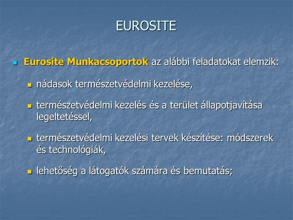EUROSITE Eurosite Munkacsoportok az alábbi feladatokat elemzik: Eurosite Munkacsoportok az alábbi feladatokat elemzik: nádasok természetvédelmi kezelése, nádasok természetvédelmi kezelése, természetvédelmi kezelés és a terület állapotjavítása legeltetéssel, természetvédelmi kezelés és a terület állapotjavítása legeltetéssel, természetvédelmi kezelési tervek készítése: módszerek és technológiák, természetvédelmi kezelési tervek készítése: módszerek és technológiák, lehetőség a látogatók számára és bemutatás; lehetőség a látogatók számára és bemutatás;