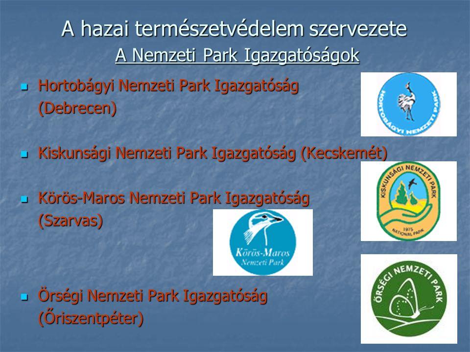 A hazai természetvédelem szervezete A Nemzeti Park Igazgatóságok Hortobágyi Nemzeti Park Igazgatóság Hortobágyi Nemzeti Park Igazgatóság(Debrecen) Kiskunsági Nemzeti Park Igazgatóság (Kecskemét) Kiskunsági Nemzeti Park Igazgatóság (Kecskemét) Körös-Maros Nemzeti Park Igazgatóság Körös-Maros Nemzeti Park Igazgatóság(Szarvas) Örségi Nemzeti Park Igazgatóság Örségi Nemzeti Park Igazgatóság(Őriszentpéter)