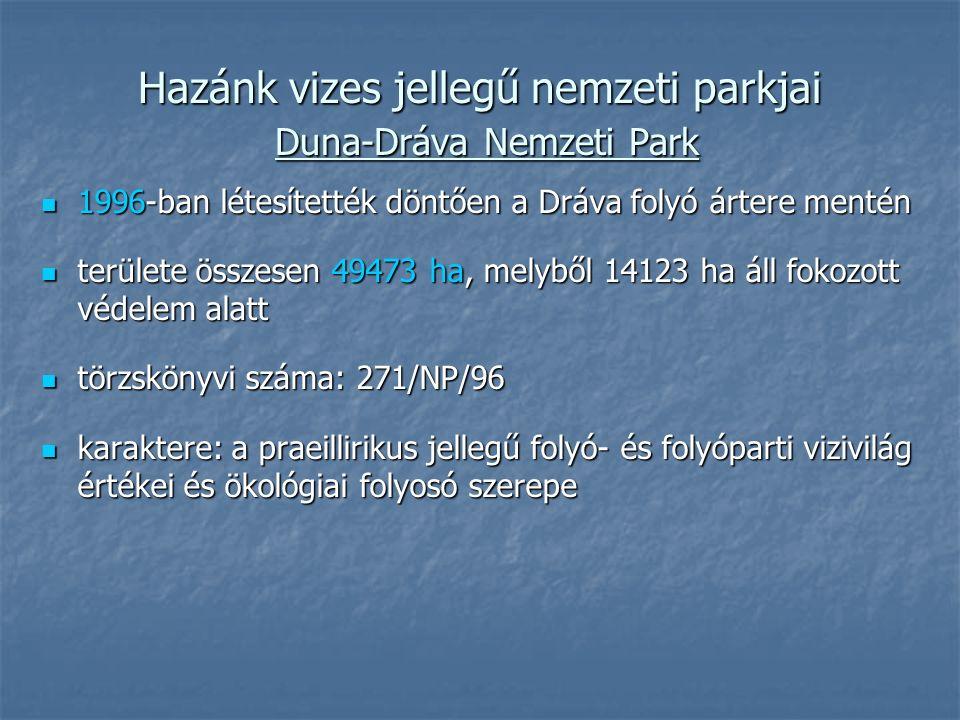 Hazánk vizes jellegű nemzeti parkjai Duna-Dráva Nemzeti Park 1996-ban létesítették döntően a Dráva folyó ártere mentén 1996-ban létesítették döntően a Dráva folyó ártere mentén területe összesen 49473 ha, melyből 14123 ha áll fokozott védelem alatt területe összesen 49473 ha, melyből 14123 ha áll fokozott védelem alatt törzskönyvi száma: 271/NP/96 törzskönyvi száma: 271/NP/96 karaktere: a praeillirikus jellegű folyó- és folyóparti vizivilág értékei és ökológiai folyosó szerepe karaktere: a praeillirikus jellegű folyó- és folyóparti vizivilág értékei és ökológiai folyosó szerepe