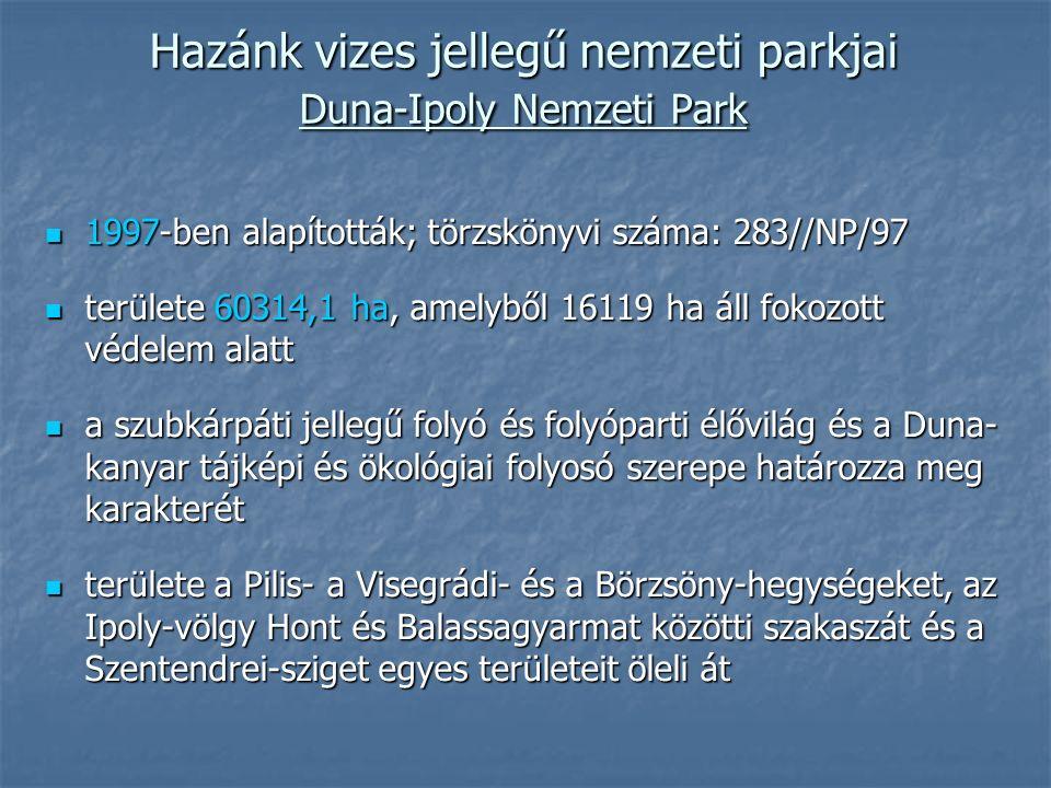 Hazánk vizes jellegű nemzeti parkjai Duna-Ipoly Nemzeti Park 1997-ben alapították; törzskönyvi száma: 283//NP/97 1997-ben alapították; törzskönyvi száma: 283//NP/97 területe 60314,1 ha, amelyből 16119 ha áll fokozott védelem alatt területe 60314,1 ha, amelyből 16119 ha áll fokozott védelem alatt a szubkárpáti jellegű folyó és folyóparti élővilág és a Duna- kanyar tájképi és ökológiai folyosó szerepe határozza meg karakterét a szubkárpáti jellegű folyó és folyóparti élővilág és a Duna- kanyar tájképi és ökológiai folyosó szerepe határozza meg karakterét területe a Pilis- a Visegrádi- és a Börzsöny-hegységeket, az Ipoly-völgy Hont és Balassagyarmat közötti szakaszát és a Szentendrei-sziget egyes területeit öleli át területe a Pilis- a Visegrádi- és a Börzsöny-hegységeket, az Ipoly-völgy Hont és Balassagyarmat közötti szakaszát és a Szentendrei-sziget egyes területeit öleli át