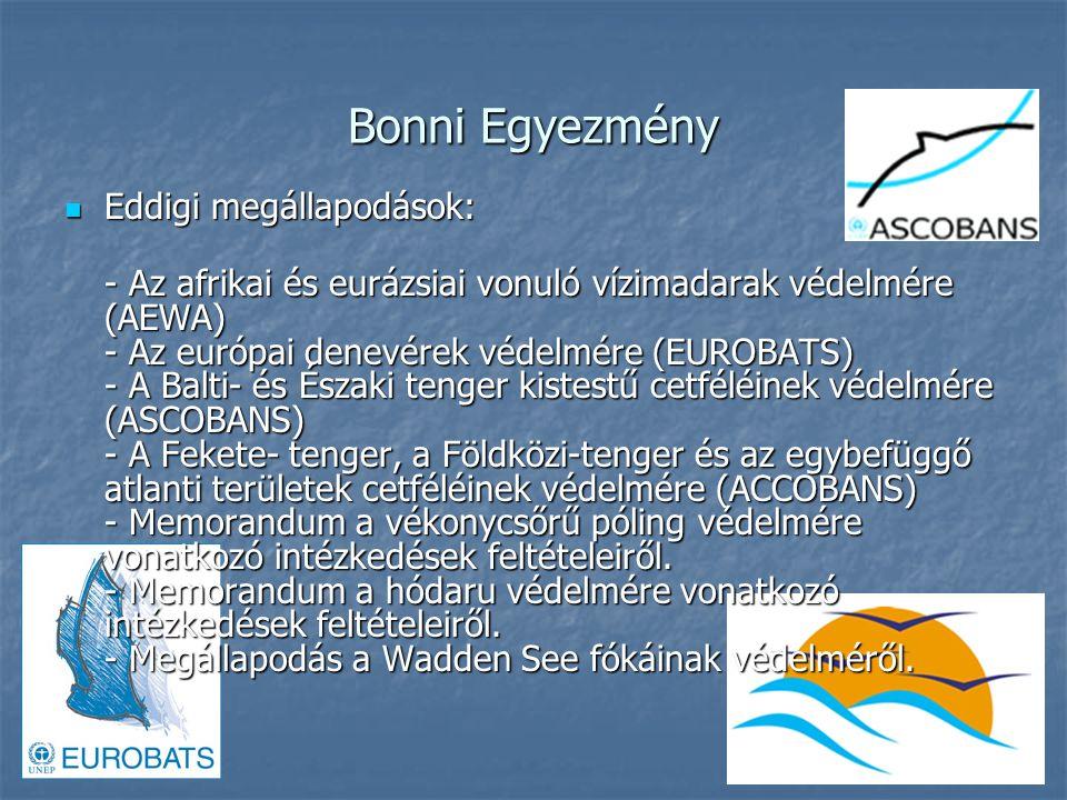 Bonni Egyezmény Eddigi megállapodások: Eddigi megállapodások: - Az afrikai és eurázsiai vonuló vízimadarak védelmére (AEWA) - Az európai denevérek védelmére (EUROBATS) - A Balti- és Északi tenger kistestű cetféléinek védelmére (ASCOBANS) - A Fekete- tenger, a Földközi-tenger és az egybefüggő atlanti területek cetféléinek védelmére (ACCOBANS) - Memorandum a vékonycsőrű póling védelmére vonatkozó intézkedések feltételeiről.