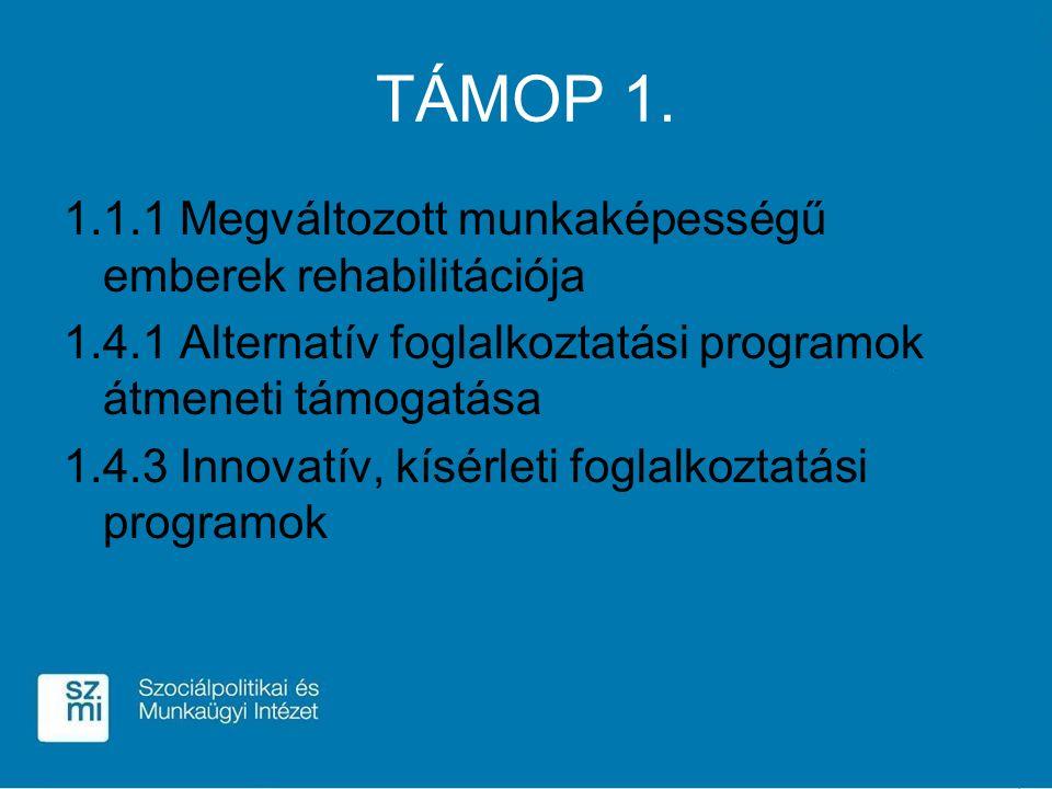 TÁMOP 1. 1.1.1 Megváltozott munkaképességű emberek rehabilitációja 1.4.1 Alternatív foglalkoztatási programok átmeneti támogatása 1.4.3 Innovatív, kís