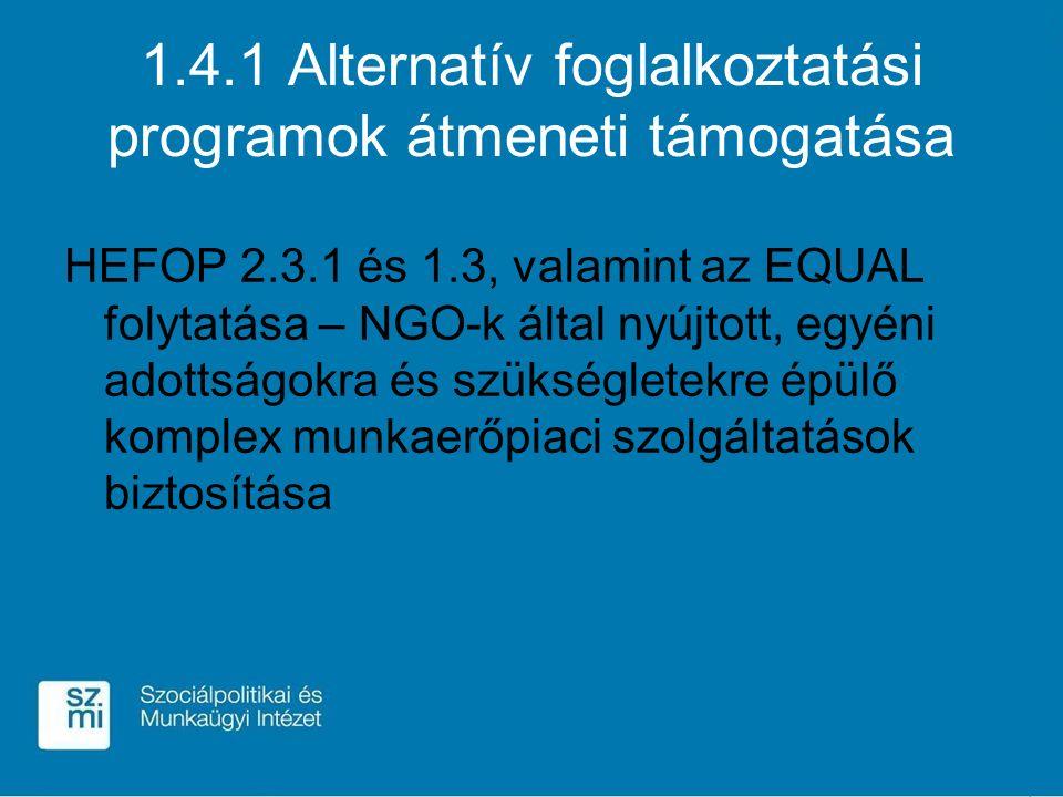1.4.1 Alternatív foglalkoztatási programok átmeneti támogatása HEFOP 2.3.1 és 1.3, valamint az EQUAL folytatása – NGO-k által nyújtott, egyéni adottságokra és szükségletekre épülő komplex munkaerőpiaci szolgáltatások biztosítása