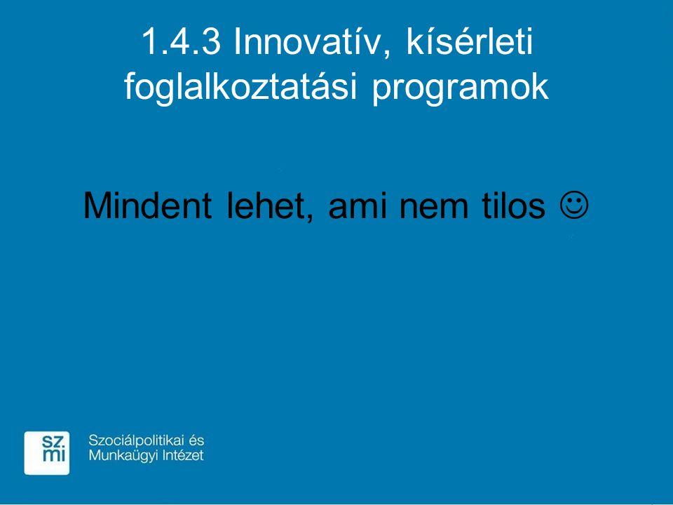 1.4.3 Innovatív, kísérleti foglalkoztatási programok Mindent lehet, ami nem tilos