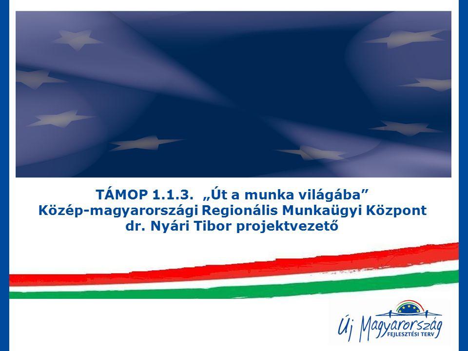 """TÁMOP 1.1.3. """"Út a munka világába Közép-magyarországi Regionális Munkaügyi Központ dr."""