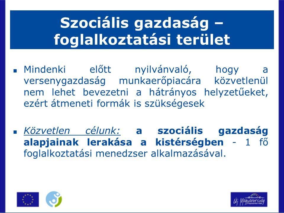 Szociális gazdaság – foglalkoztatási terület Mindenki előtt nyilvánvaló, hogy a versenygazdaság munkaerőpiacára közvetlenül nem lehet bevezetni a hátrányos helyzetűeket, ezért átmeneti formák is szükségesek Közvetlen célunk: a szociális gazdaság alapjainak lerakása a kistérségben - 1 fő foglalkoztatási menedzser alkalmazásával.