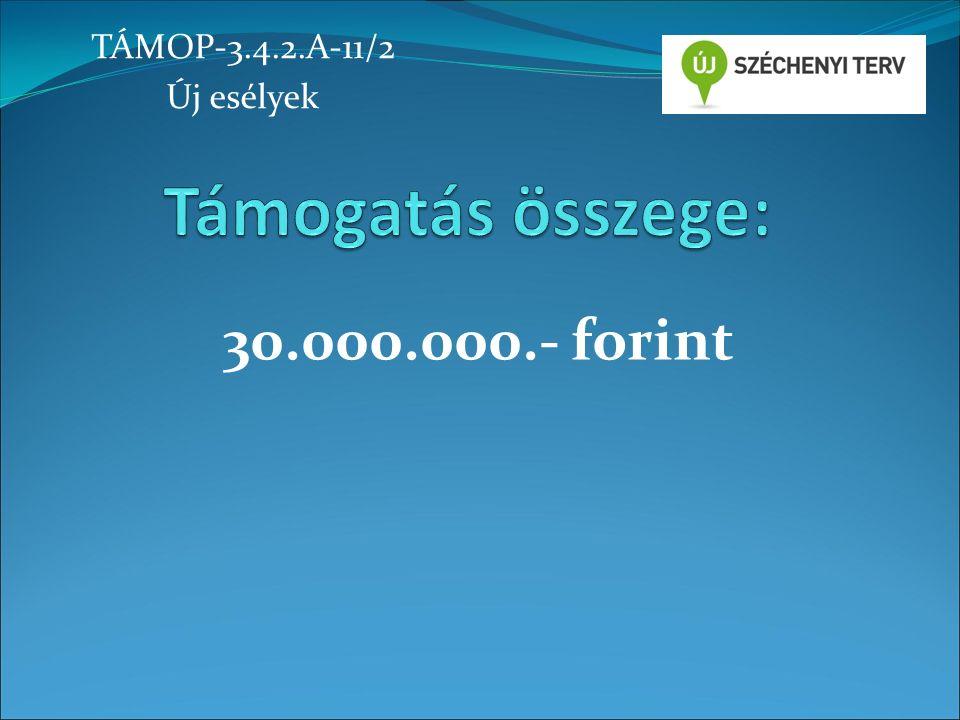 30.000.000.- forint TÁMOP-3.4.2.A-11/2 Új esélyek