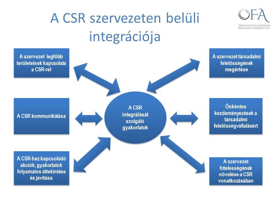 A CSR szervezeten belüli integrációja A CSR integrálását szolgáló gyakorlatok A CSR kommunikálása A szervezet legfőbb területeinek kapcsolata a CSR-rel A CSR-hez kapcsolódó akciók, gyakorlatok folyamatos áttekintése és javítása A szervezet hitelességének növelése a CSR vonatkozásában Önkéntes kezdeményezések a társadalmi felelősségvállalásért A szervezet társadalmi felelősségének megértése