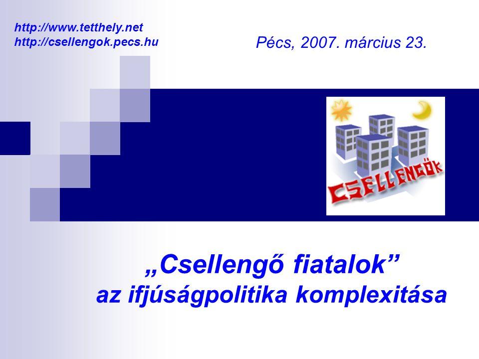 """""""Csellengő fiatalok az ifjúságpolitika komplexitása Pécs, 2007."""