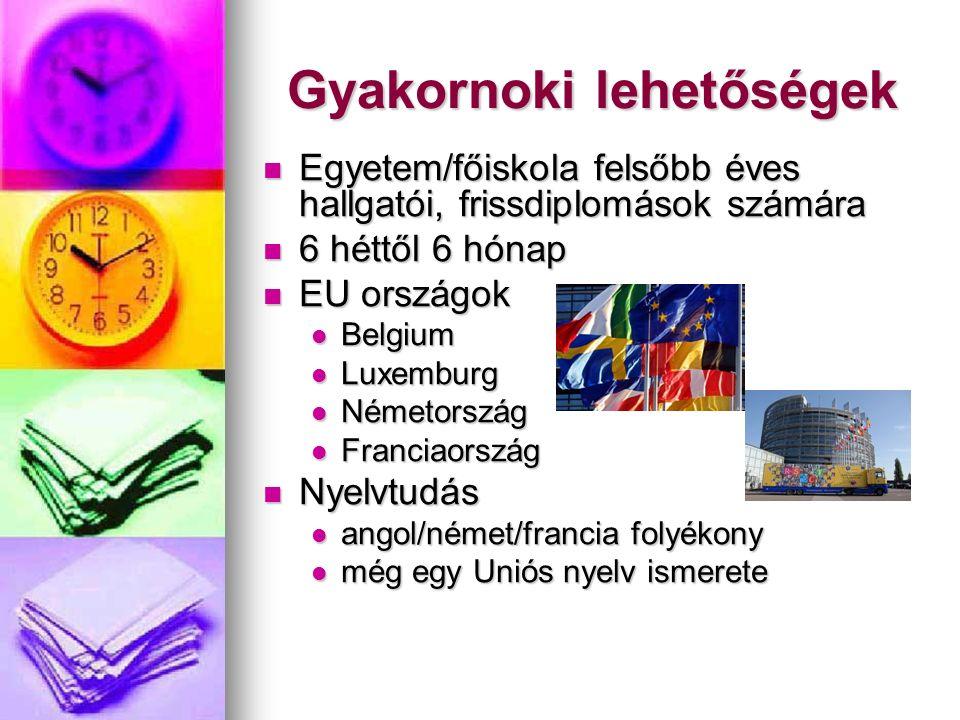 Gyakornoki lehetőségek Egyetem/főiskola felsőbb éves hallgatói, frissdiplomások számára Egyetem/főiskola felsőbb éves hallgatói, frissdiplomások számára 6 héttől 6 hónap 6 héttől 6 hónap EU országok EU országok Belgium Belgium Luxemburg Luxemburg Németország Németország Franciaország Franciaország Nyelvtudás Nyelvtudás angol/német/francia folyékony angol/német/francia folyékony még egy Uniós nyelv ismerete még egy Uniós nyelv ismerete