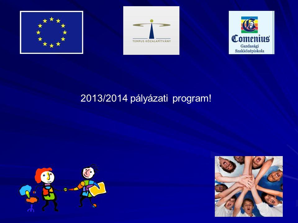 2013/2014 pályázati program!