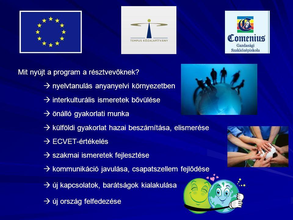 Mit nyújt a program a résztvevőknek?  nyelvtanulás anyanyelvi környezetben  interkulturális ismeretek bővülése  önálló gyakorlati munka  szakmai i