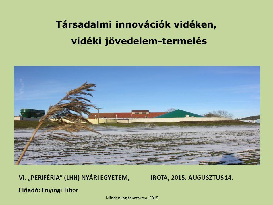 Társadalmi innovációk vidéken, vidéki jövedelem-termelés VI.