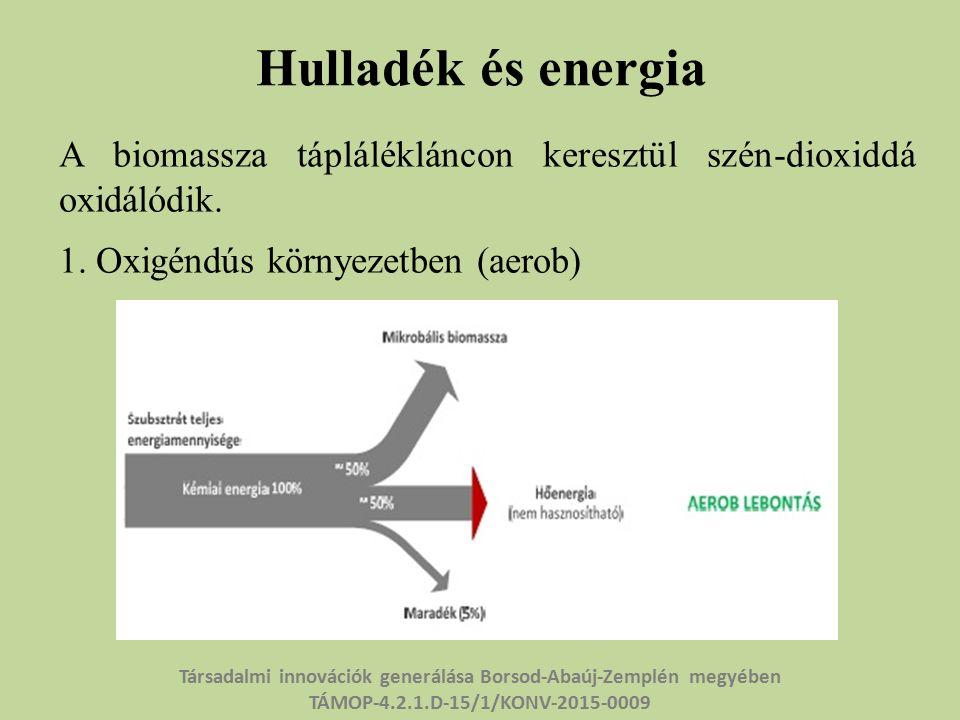 Hulladék és energia A biomassza táplálékláncon keresztül szén-dioxiddá oxidálódik.