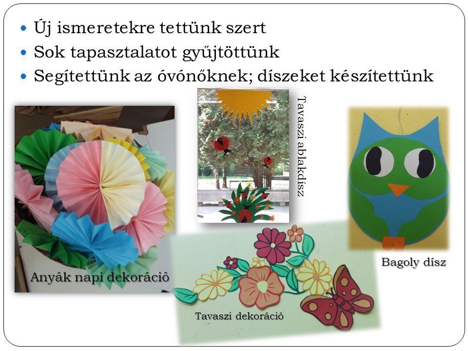 Új ismeretekre tettünk szert Sok tapasztalatot gyűjtöttünk Segítettünk az óvónőknek; díszeket készítettünk Anyák napi dekoráció Tavaszi dekoráció Tava