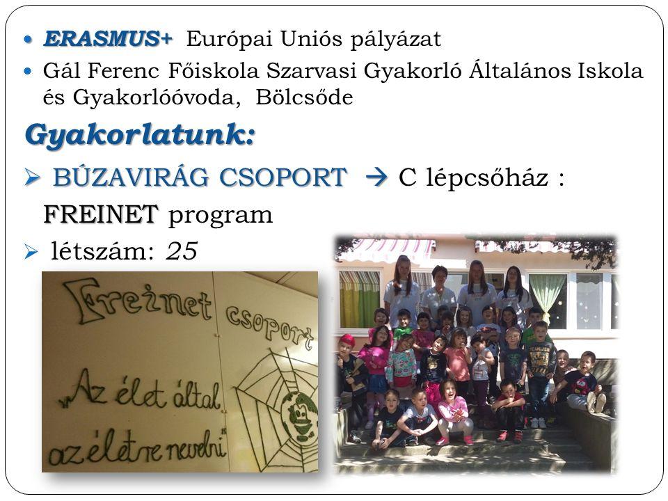 ERASMUS+ ERASMUS+ Európai Uniós pályázat Gál Ferenc Főiskola Szarvasi Gyakorló Általános Iskola és Gyakorlóóvoda, BölcsődeGyakorlatunk:  BÚZAVIRÁG CSOPORT   BÚZAVIRÁG CSOPORT  C lépcsőház : FREINET FREINET program  létszám: 25