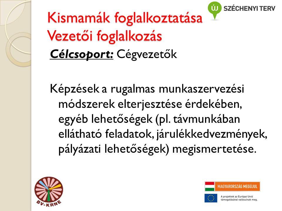 Kismamák foglalkoztatása Vezetői foglalkozás Célcsoport: Cégvezetők Képzések a rugalmas munkaszervezési módszerek elterjesztése érdekében, egyéb lehetőségek (pl.