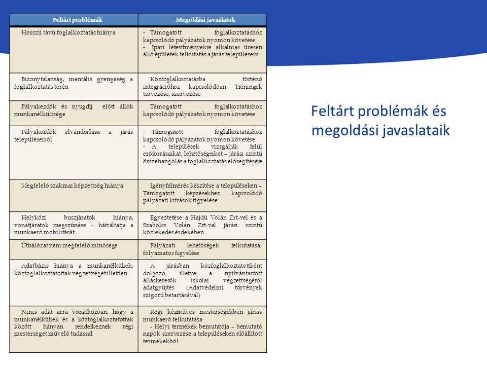 Feltárt problémákMegoldási javaslatok Hosszú távú foglalkoztatás hiánya - Támogatott foglalkoztatáshoz kapcsolódó pályázatok nyomon követése. - Ipari