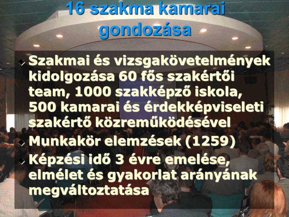 SZINTVIZSGÁK  Törvényi háttér – többször módosított 1993.