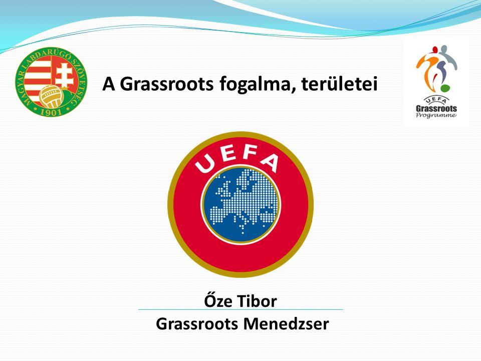 A Grassroots fogalma, területei Őze Tibor Grassroots Menedzser