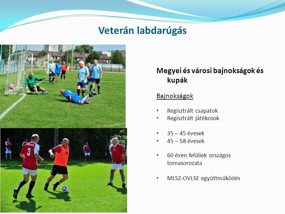 Veterán labdarúgás Megyei és városi bajnokságok és kupák Bajnokságok Regisztrált csapatok Regisztrált játékosok 35 – 45 évesek 45 – 58 évesek 60 éven