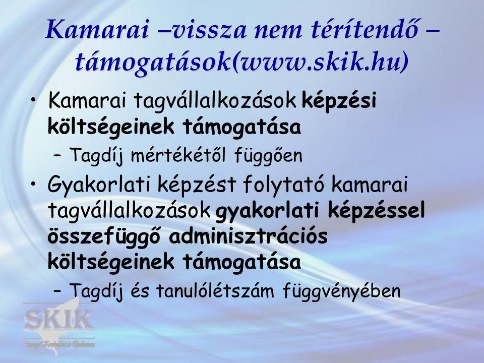 Kamarai –vissza nem térítendő – támogatások(www.skik.hu) Kamarai tagvállalkozások képzési költségeinek támogatása –Tagdíj mértékétől függően Gyakorlati képzést folytató kamarai tagvállalkozások gyakorlati képzéssel összefüggő adminisztrációs költségeinek támogatása –Tagdíj és tanulólétszám függvényében