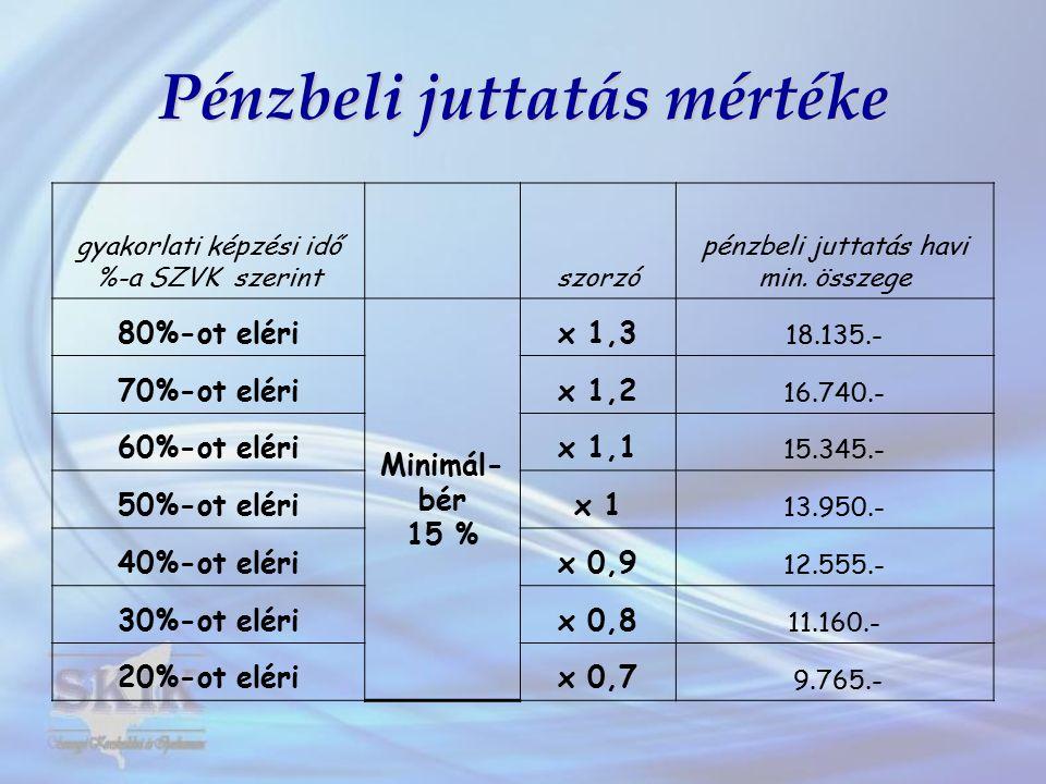 Pénzbeli juttatás mértéke gyakorlati képzési idő %-a SZVK szerintszorzó pénzbeli juttatás havi min. összege 80%-ot eléri Minimál- bér 15 % x 1,3 18.13
