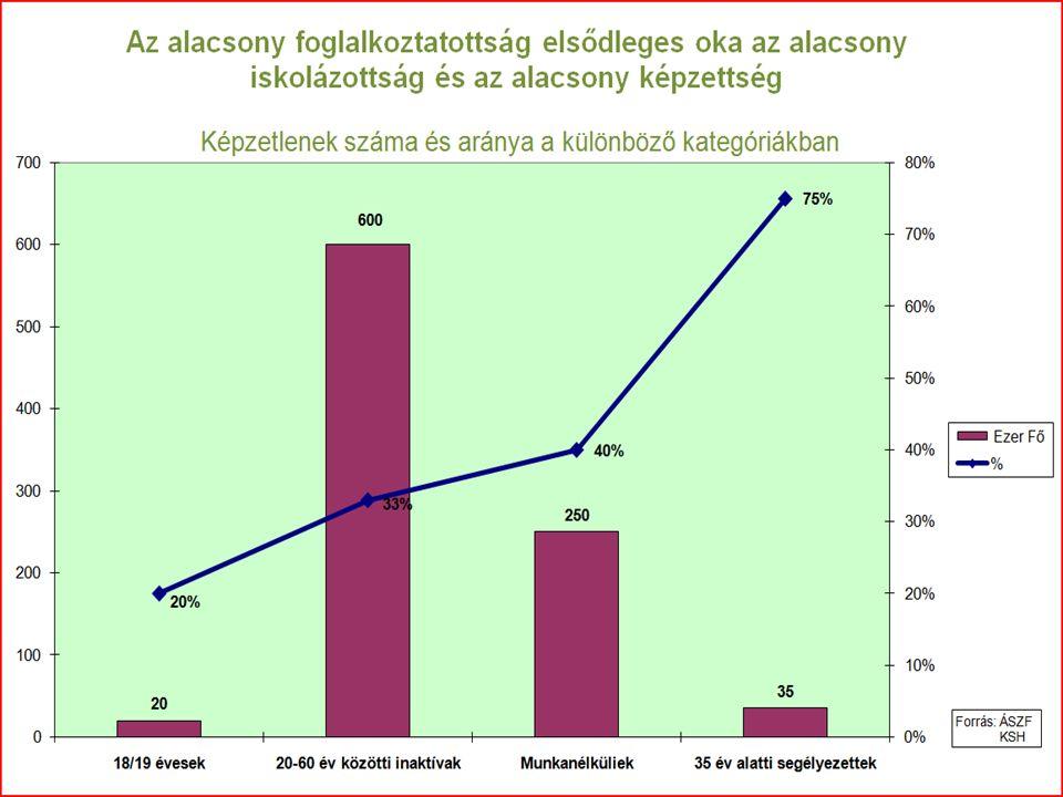 Alacsony végzettségűek esélyei a munkapiacon Munkavégző képességben komoly deficit Alacsony termelékenység miatt relatív drága munkaerő Alapvető írás, olvasás, számolás, szövegértés hiánya Munkapiacon nem tudják eladni munkaerejüket Új munkahelyek elérhetetlenek, technológiai váltás Képzésük nehéz és költséges