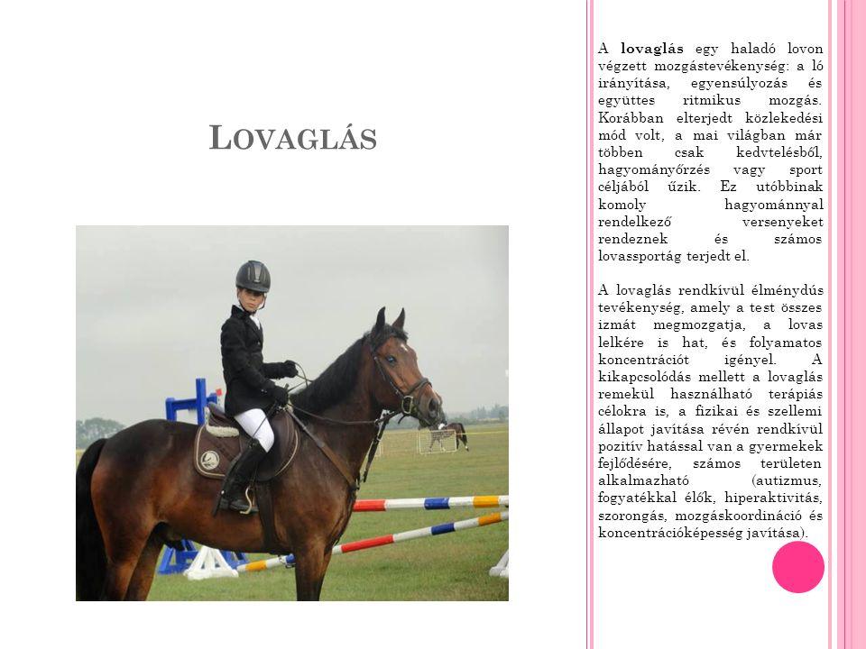 L OVAGLÁS A lovaglás egy haladó lovon végzett mozgástevékenység: a ló irányítása, egyensúlyozás és együttes ritmikus mozgás.