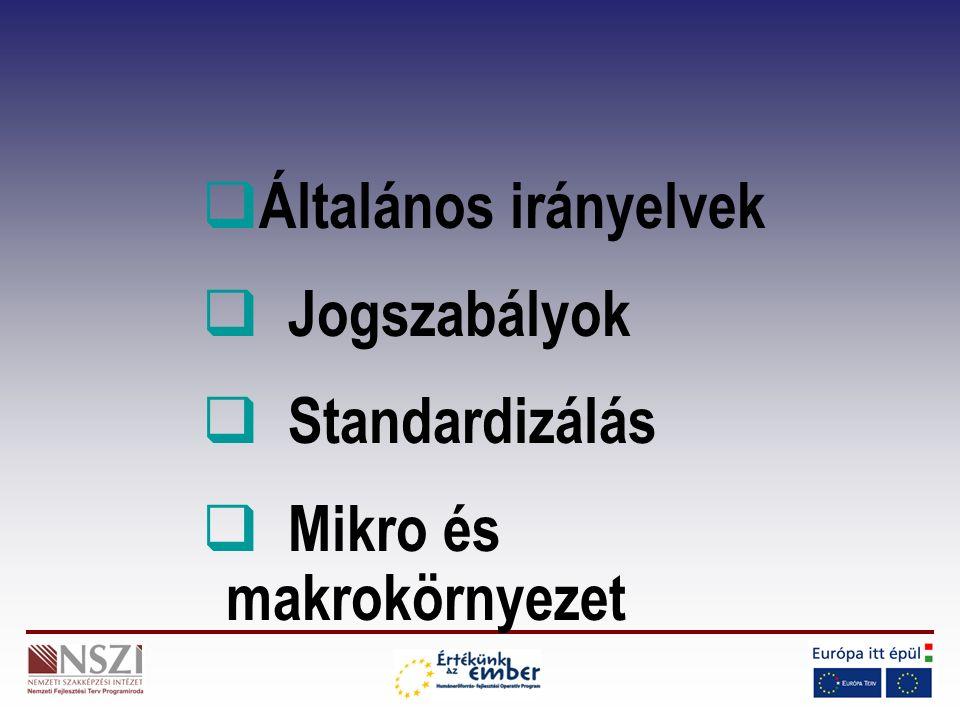  Általános irányelvek  Jogszabályok  Standardizálás  Mikro és makrokörnyezet