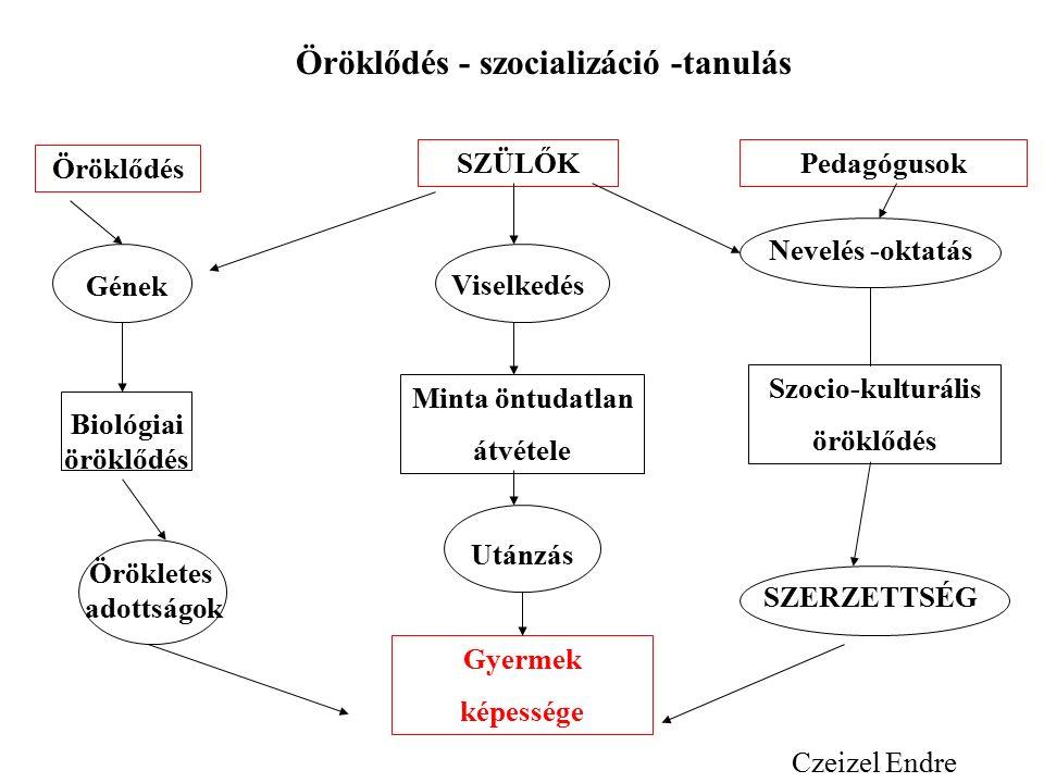Gyermek képessége Örökletes adottságok Biológiai öröklődés Gének Öröklődés Utánzás Minta öntudatlan átvétele Viselkedés SZÜLŐK SZERZETTSÉG Szocio-kulturális öröklődés Nevelés -oktatás Pedagógusok Öröklődés - szocializáció -tanulás Czeizel Endre